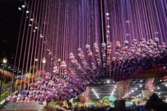 Philadelphia Flower Show 2017. The Philadelphia Flower Show March 11th 2017 Opening Day. The theme is Holland Stock Images