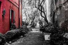 Philadelphia gränd i charlestonen, SC Arkivfoton
