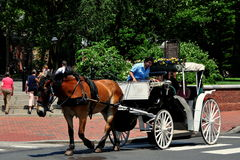 Philadelphia, PA: Horse Carriage with Tourists Stock Images