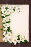 Philadelphus Flowers. Philadelphus mock orange flower border on a natural hemp notebook over brown paper background. Belle etoile Stock Image