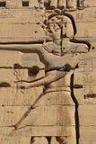 Philae tempel Royaltyfria Bilder