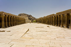 Philae Temple. Details of Egyptian art: Philae temple Royalty Free Stock Image