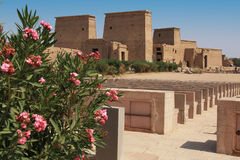 Philae temple. Overview of Philae temple, Egypt Royalty Free Stock Photos
