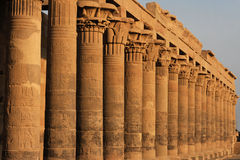 Philae temple columns Royalty Free Stock Image