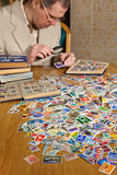 Philatelist. Is examining an old postage stamp with magnifying glass Royalty Free Stock Image