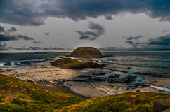 Philip Island at Nobbies during Sunset Stock Images