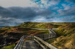 Philip Island at Nobbies Walkway Stock Photography