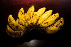 Philippine Banana Royalty Free Stock Photos