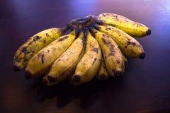 Philippine Banana Stock Photography