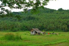 Philippine countryside Stock Photography