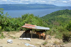 Philippinen, Luzon-Insel lizenzfreies stockbild