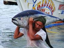 Philippines#6的黄鳍金枪鱼手工渔业 图库摄影
