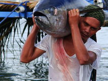 Philippines#1的黄鳍金枪鱼手工渔业 免版税图库摄影