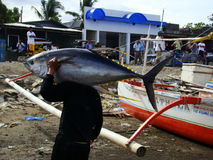 Philippines#10的黄鳍金枪鱼手工渔业 免版税库存图片