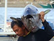 Philippines#14的黄鳍金枪鱼手工渔业 图库摄影
