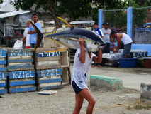 Philippines#21的黄鳍金枪鱼手工渔业 库存照片