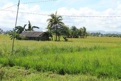 philippines Royaltyfria Bilder