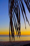 Beautiful sunset on the beach Royalty Free Stock Images