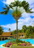 Philippines: beautiful view of the swimming pool Stock Photos