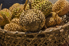 Philippines Durian Royalty Free Stock Photography