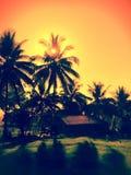 Philippines. Landscape nature dusk Royalty Free Stock Image