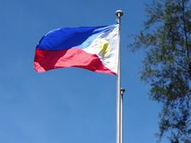 Philippines National Flag . stock video footage