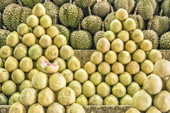 Philippines Pomelo and Durian Stock Photos