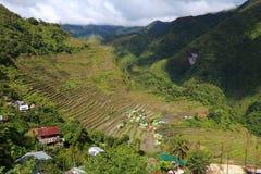 Batad, Philippines. Philippines rice terraces - rice cultivation in Batad village (Banaue area Stock Image