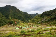 Batad rice fields, Philippines. Philippines rice terraces - rice cultivation in Batad village (Banaue area Royalty Free Stock Photo