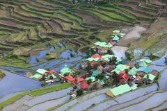 Batad rice terraces. Philippines rice terraces - rice cultivation in Batad village (Banaue area Stock Photography
