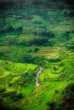 Philippinische Reis-Terrassen lizenzfreies stockfoto