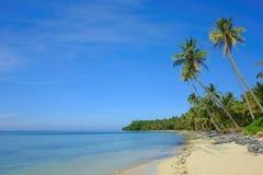 Philippinischer Strand mit Palmen Stockbild