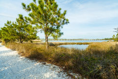 Philips Inlet. Beautiful Philips Inlet in the North Florida panhandle area near Panama City with the highway 98 bridge in the background Royalty Free Stock Photo