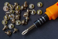 Philips screwdriver and screws Stock Photo