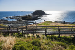 Phillip island in Melbourne Stock Images