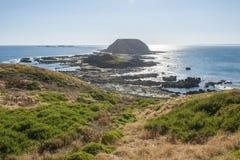 Phillip island in Melbourne Stock Photos