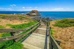 Phillip Island Nature Park Lizenzfreie Stockfotos