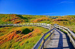 Phillip Island, Victoria, Australia. Royalty Free Stock Photos