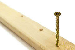 Phillips screw in wood. Stock Images