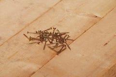 Phillips screws wood. Phillips screws on a wooden floor Royalty Free Stock Photos