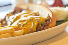 Philly Cheesesteak. A messy Philly Cheesesteak with onions and peppers with fries on the side Stock Photo