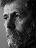 Philosopher - pensive man with beard portrait Royalty Free Stock Photo