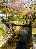 Philosopher's path, Kyoto, Japan 4 Stock Image