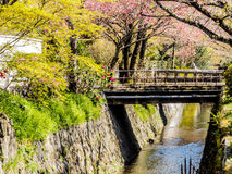 Philosopher's path, Kyoto, Japan 5 Royalty Free Stock Photography