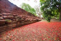 Phimai historical park Stock Photography