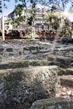 Phimeanekas寺庙或Vimeanakas废墟在吴哥是印度寺庙, 10世纪,暹粒市,柬埔寨 在一块石头的焦点在fo 库存照片