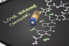 Phiole der blauen Kappe der Nahaufnahme Beispielauf Notizbuch mit chemischer Formel Stockfotos