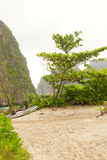 PhiPhi Ley Island. The beach of Phiphi ley island in the Andaman Sea in Thailand Royalty Free Stock Images