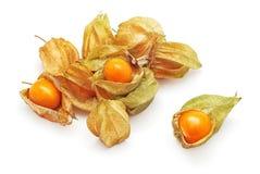 Phisalis exotic fruit Stock Image