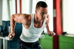 Phisique fitness competitor works out in gym lifting dumbbells Royalty Free Stock Photo